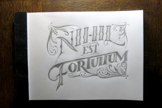 Nihil est Fortuitum