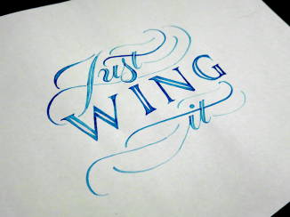 Just Wing It Colour